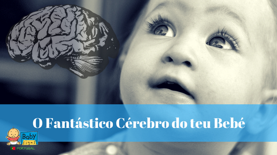 O Fantástico Cérebro do teu Bebé […e como os afetos o moldam]